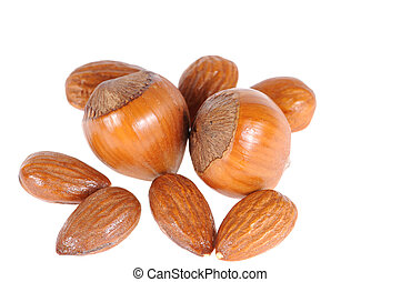 hazelnuts and almond isolated on white background
