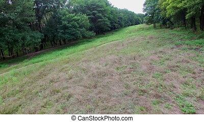 Aerial - Horses in pasture