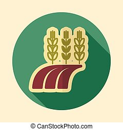 Ears Wheat, Barley, Rye on Field retro flat icon