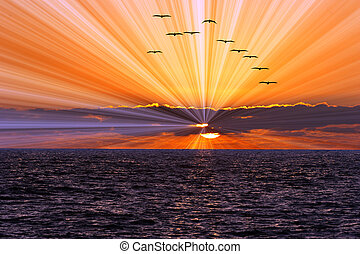 Sun Ray Ocean Sunset - Sun ray ocean sunset is a bright...