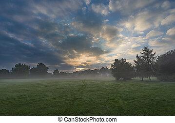 Misty morning - Sun rising over a misty park landscape