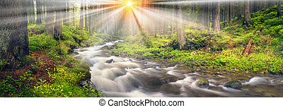 Prut river in the wild forest - River at sunrise in the...