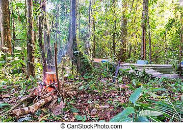 Amazonian Campsite - Campfire and boat in the Amazon rain...