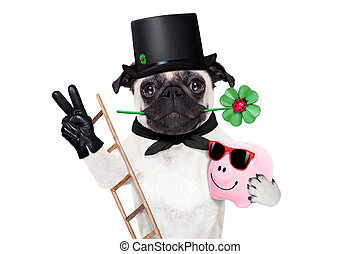 new years eve dog - pug dog as chimney sweeper with four...