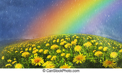 Rainbow over flowers - Glade Spring and summer...
