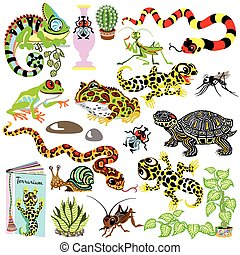 terrarium animals set - cartoon set with reptiles...
