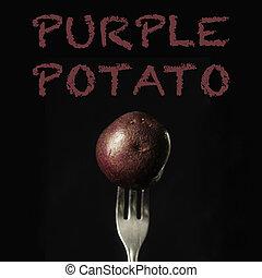 Purple potato on a fork on a black background