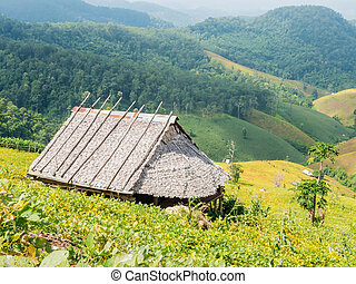 The country bamboo hut with leaves roof on the mountain