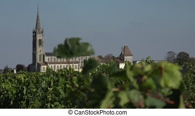Pomerol in Bordeaux vineyard - the bell tower of Pomerol...