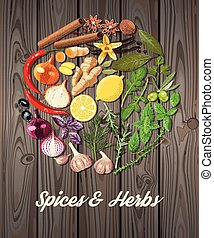 Circle of spices - Illustration of circle of spices and...