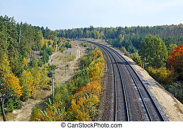 Railroad Track - Two railway track in the forest The quality...