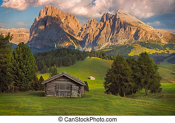 Seiser Alm with Langkofel group, South Tyrol, Dolomites,...