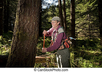 Forester in a Pacific Northwest forest