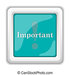 Important icon Internet button on white background
