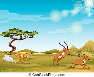 Cheetah chasing deers in the savanna illustration