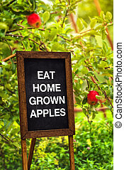 Eat home grown apples - title on chalkboard in organic fruit...