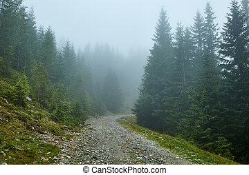 Mountain road in a foggy day