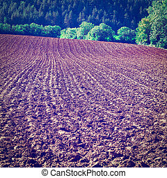 Plowed Fields - Plowed Sloping Hills in France after...