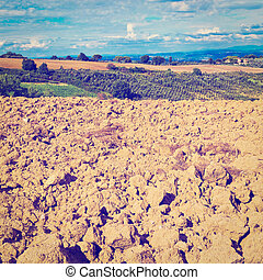 Plowed Fields - Plowed Sloping Hills of Tuscany in the...