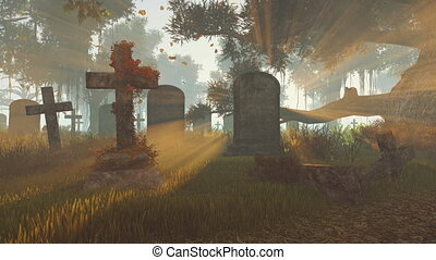 Old gravestones at sunset rays