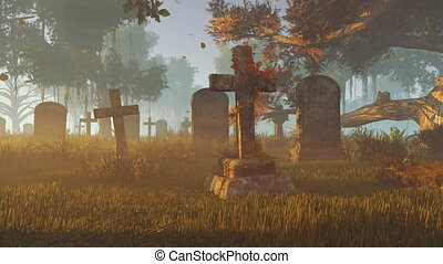 Old tombstones at sunset rays - Old abandoned cemetery at...