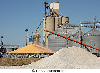 Grain Elevator - Loading corn for storage at a grain...