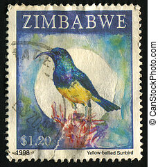 postmark - ZIMBABWE - CIRCA 1998: Birds sit on a tree, circa...