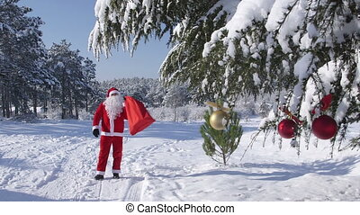 Santa Claus in the winter forest - Santa Claus with gift bag...