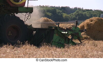Wheat harvesting shearers 3 - Harvester on field of rye