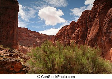 desert canyon walls - blue skies over red sandstone canyons...