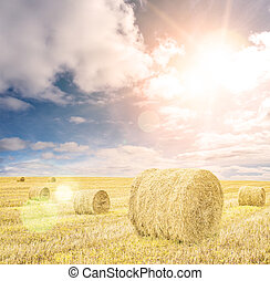 Harvested wheat field with hay rolls and blue sky clouds and sun