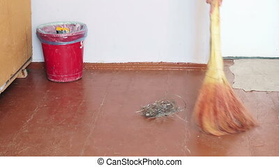Girl with a broom sweeps debris on the floor and throws it...