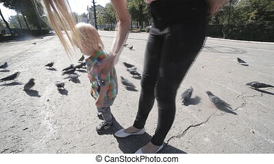 little Boy and pigeons