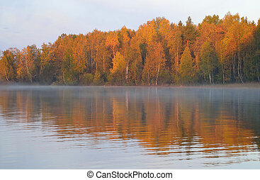 Autumn forest on the lake at sunrise - Autumn forest on the...