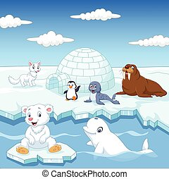 Arctics animals collection set - Vector illustration of...