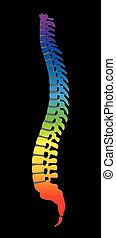Spine Colorful Backbone Black - Spine - rainbow gradient...