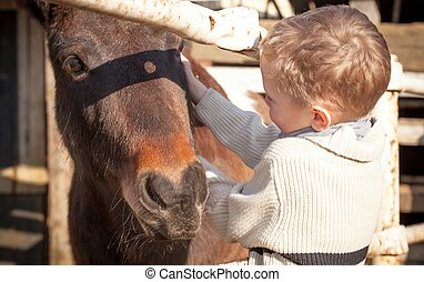 Child and pony in the mini zoo