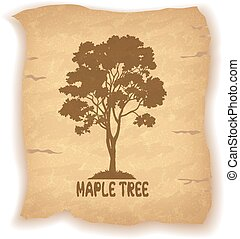 Maple Tree on Old Paper