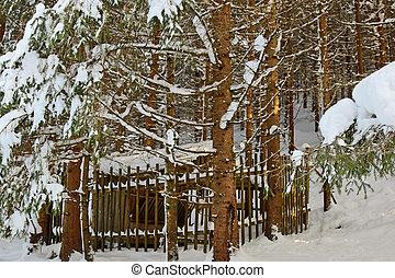 Winter feeding for deers