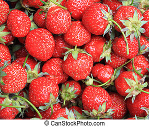 strawberry - full frame - background from freshly harvested...