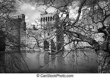 Medieval castle fortress with moat