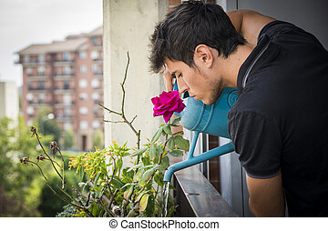 Young Man Watering Plants on Apartment Balcony - Attractive...