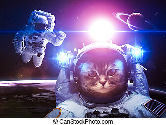 An astronaut cat floats above Earth. Stars provide the...