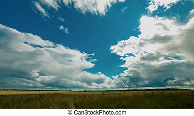 Cloudy sky over field. Cumulus clouds, sun, rain. - Sown...