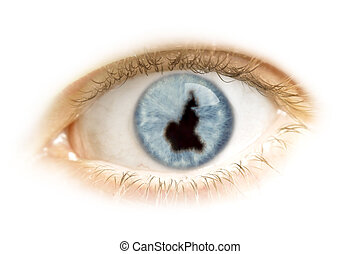 Close-up of an eye with the pupil in the shape of Cameroon.(series)