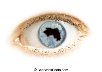 Close-up of an eye with the pupil in the shape of Guinea.(series)
