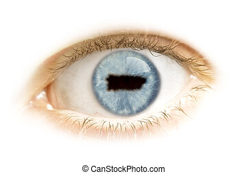Close-up of an eye with the pupil in the shape of Puerto Rico.(series)