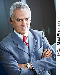 mature businessman in office - portrait of mature business...