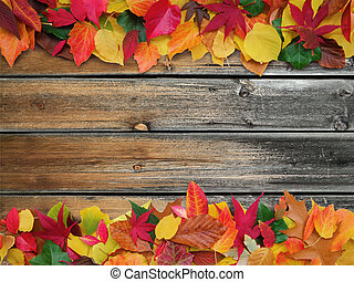 decorative autumn background with copy space - colorful...