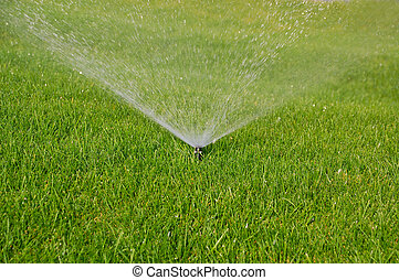 grass sprinkler - sprinkler watering the green grass on a...